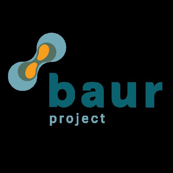Baur E-Portfolio